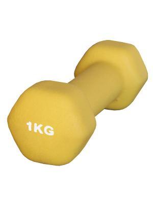 Гантель неопреновая 1 кг Atemi, AD-01-1 Atemi. Цвет: желтый