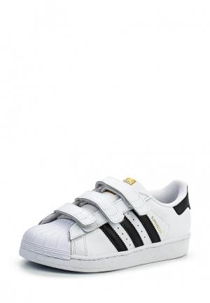 Кроссовки adidas Originals. Цвет: белый