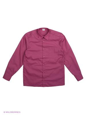 Рубашка Аэлита. Цвет: розовый