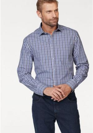 Рубашка STUDIO COLETTI. Цвет: белый/синий в клетку