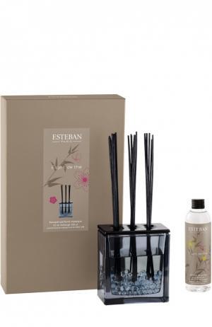 Ароматический деко-букет Esprit De Esteban. Цвет: бесцветный
