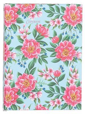 Тетрадь на кольцах 120 листов.Весенние цветы Канц-Эксмо. Цвет: зеленый, розовый, желтый