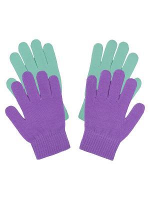 Перчатки Icepeak. Цвет: фиолетовый