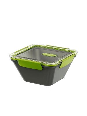 Ланч-бокс EMSA BENTO BOX 0.9л серый/зеленый 513951. Цвет: серый, зеленый