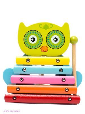 Ксилофон Совенок MAPACHA. Цвет: зеленый, голубой, розовый