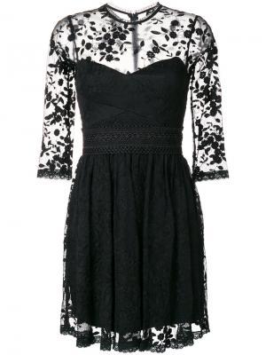 Расклешенное кружевное платье Three Floor. Цвет: чёрный