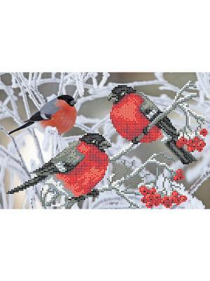 Рисунок на шелке Снегири Матренин Посад. Цвет: красный, белый, серо-коричневый