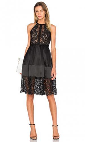 Мини платье solaris Three Floor. Цвет: черный