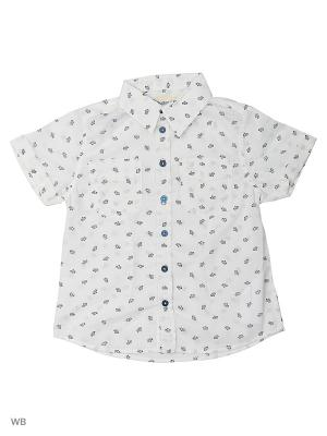 Сорочка Button Blue. Цвет: белый