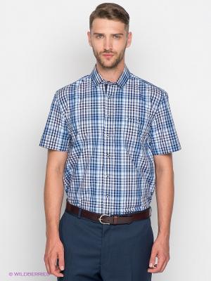 Рубашка Maestro. Цвет: синий, голубой