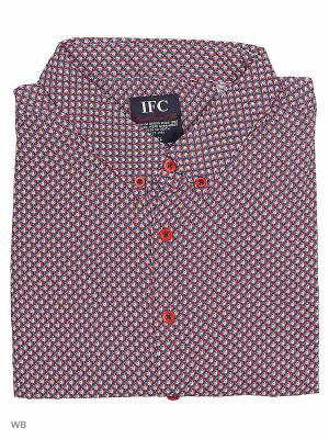 Рубашка IFC. Цвет: малиновый, белый, темно-синий
