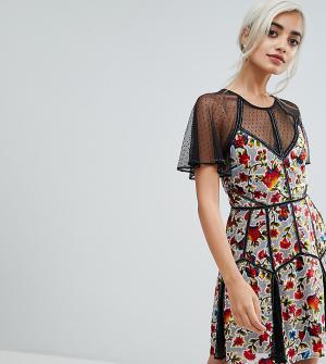 Frock and Frill Petite Бархатное платье мини с цветочным принтом и сеткой в горошек. Цвет: мульти
