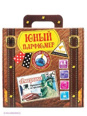Юный парфюмер Путешествие по ароматам: Америка SPL-Technik. Цвет: коричневый
