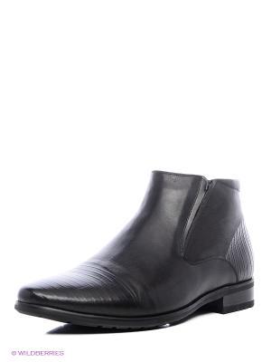 Ботинки WESTFALIKA. Цвет: коричневый