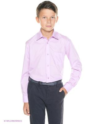 Рубашка Cascatto. Цвет: сиреневый