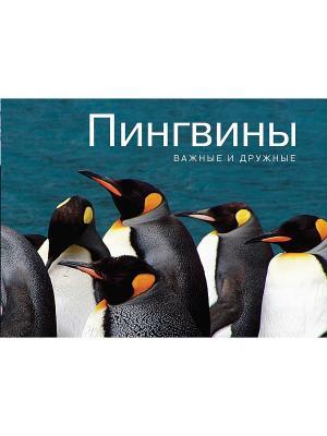 Пингвины. Важные и дружные Издательство КоЛибри. Цвет: белый