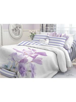 Комплект постельного белья 1,5-сп, VEROSSA,  наволочки 50*70см, Delis Verossa. Цвет: сиреневый, белый, фиолетовый