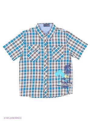 Рубашка Evita Baby. Цвет: голубой