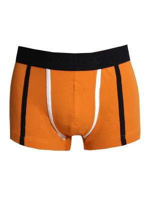 Трусы Don Jose. Цвет: оранжевый