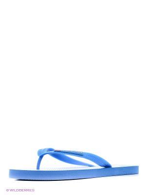 Шлепанцы U.S. Polo Assn.. Цвет: фиолетовый