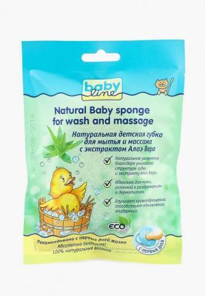 Губка для тела Babyline Детская мытья и массажа Натуральная с экстрактом Алоэ Вера