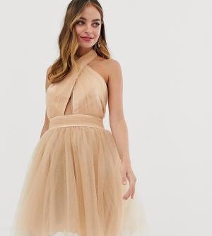 Бежевое платье мини для выпускного с пышной юбкой и блестками -Светло-коричневый Dolly & Delicious Petite