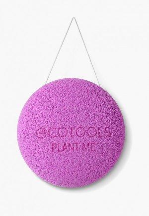 Губка для тела Ecotools Bioblender Body Cleansing Sponge. Цвет: фиолетовый