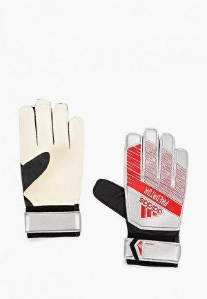 Перчатки вратарские adidas PRED TRN. Цвет: серебряный