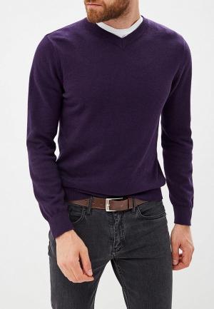Пуловер Modis. Цвет: фиолетовый