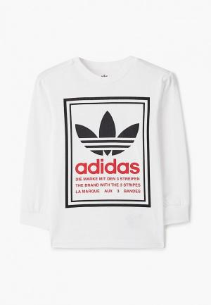 Лонгслив adidas Originals GRAPHIC LS. Цвет: белый