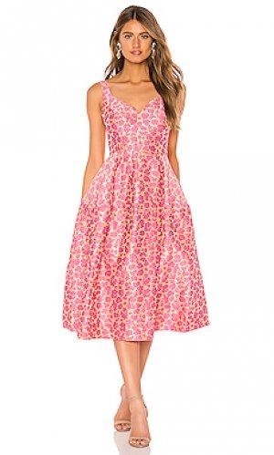 Платье JILL STUART. Цвет: розовый