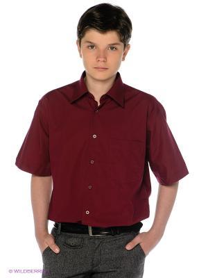 Рубашка Davani. Цвет: темно-бордовый