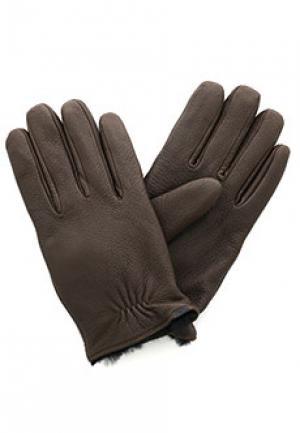 Перчатки EMPORIO ARMANI. Цвет: коричневый