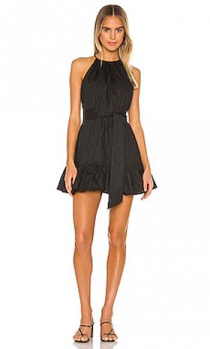 Платье jolile MAJORELLE. Цвет: черный