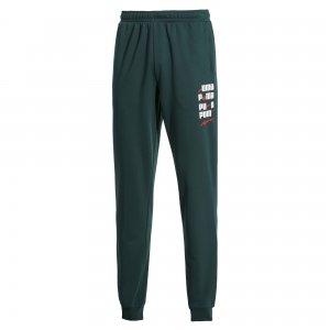 Штаны x ADER Pants PUMA. Цвет: зеленый