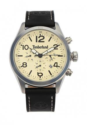 Часы Timberland TI007DMYDU48. Цвет: коричневый