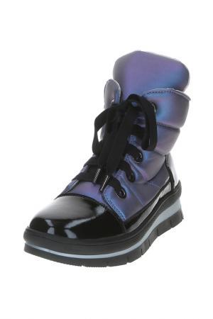 Ботинки Jog Dog. Цвет: лиловый латекс
