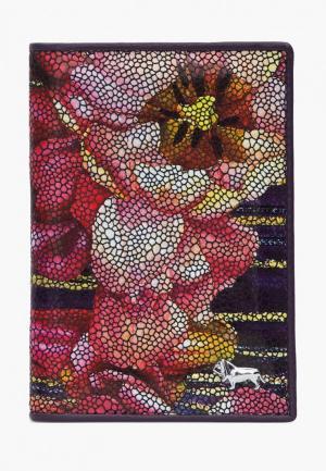 Обложка для документов Labbra. Цвет: разноцветный