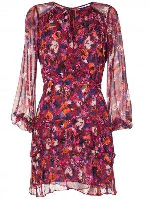 Платье с цветочным принтом Parker. Цвет: розовый