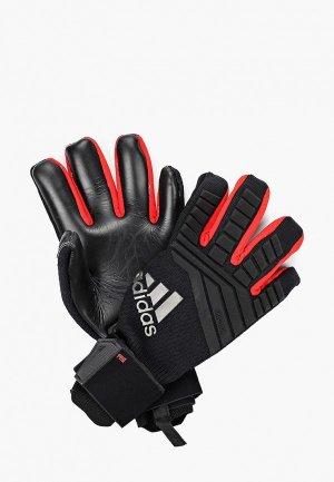 Перчатки вратарские adidas PRED PRO. Цвет: черный