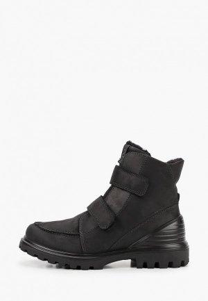 Ботинки Ecco TRED TRAY K. Цвет: черный