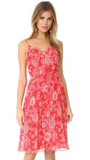 Платье Ria с цветочным рисунком Ella Moss. Цвет: оранжевый