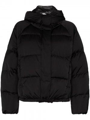 Короткая куртка-пуховик Holden. Цвет: черный