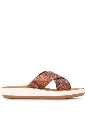 Шлепанцы со змеиным принтом Ancient Greek Sandals. Цвет: коричневый