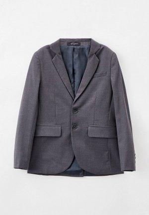 Пиджак Choupette. Цвет: серый