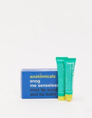 Мятный бальзам и скраб для губ Anatomicals