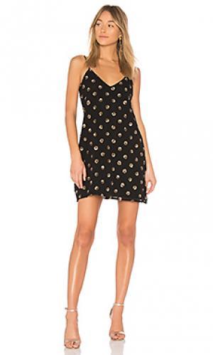 Мини платье hollis BB Dakota. Цвет: черный