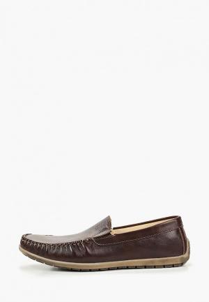 Мокасины Dino Ricci Trend. Цвет: коричневый