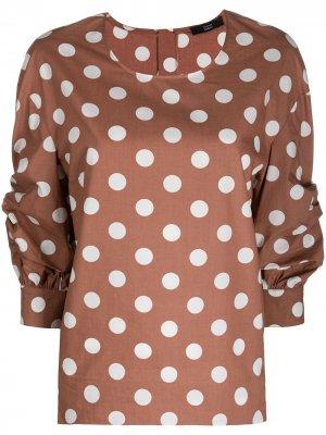 Блузка в горох Steffen Schraut. Цвет: коричневый