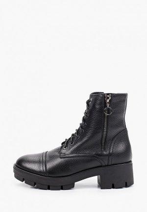 Ботинки Argo. Цвет: черный
